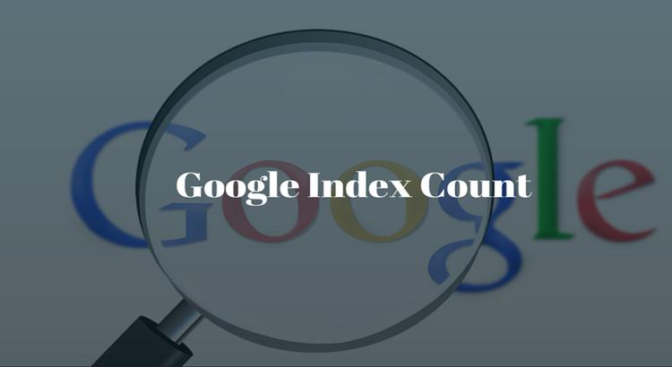 Google Index Count